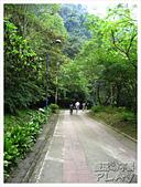 20130317_二叭子植物園:IMG_4917.JPG