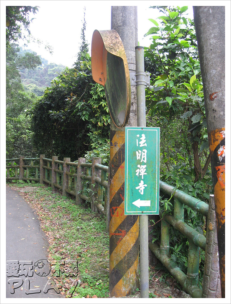 20130317_二叭子植物園:IMG_4883.JPG