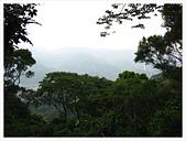 20130317_二叭子植物園:IMG_4923.JPG