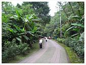 20130317_二叭子植物園:IMG_4911.JPG