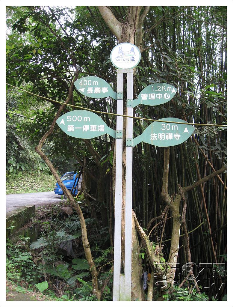 20130317_二叭子植物園:IMG_4888.JPG