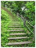 20130317_二叭子植物園:IMG_4953.JPG