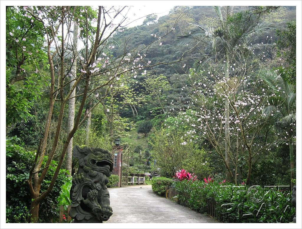 20130317_二叭子植物園:IMG_4890.JPG