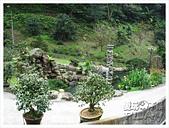 20130317_二叭子植物園:IMG_4893.JPG