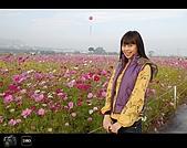 971123 新社花海節:DSC_0066.jpg
