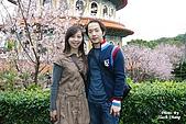 980308 大屯花卉農場、天元宮賞櫻花:DSC_0048.jpg