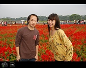 971123 新社花海節:DSC_0105.jpg