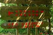 070527-情人湖與仙洞巖:DSC05715