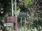 071124-東江&仙山:IMGP4862.JPG
