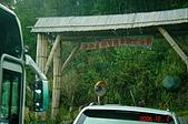 """061202-鎮西堡與神木:終於來到新光部落前的""""泰崗司那基部落"""""""