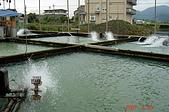 070228-宜蘭行:有名的八甲魚場養殖池