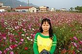070220-春節高雄台南遊:美濃的花季展覽