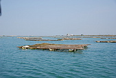 070220-春節高雄台南遊:湖中的蚵架