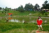 080705-福壽山露營:中間的池~山嵐飄來,美的ㄌㄟ