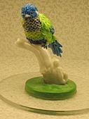 巧克力奇幻世界:鸚鵡 [640x480].jpg