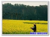 陳春吉老師-油菜花系列:0-017.jpg
