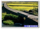 陳春吉老師-油菜花系列:12-002.jpg