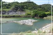 硫磺谷、鳳凰谷、十八挖水圳:DSCN5138P09.jpg