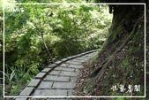 平湖步道:DSCN5423P05.jpg