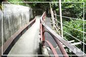 磺溪步道、橫嶺古道:DSCN5718P17.jpg