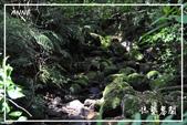 水車寮猴坎水圳:DSC_0346P124.jpg