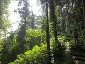 石龜岩猴洞步道:006.jpg