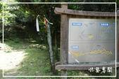 平湖步道:DSCN5437P19.jpg