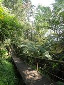 石龜岩猴洞步道:008.jpg