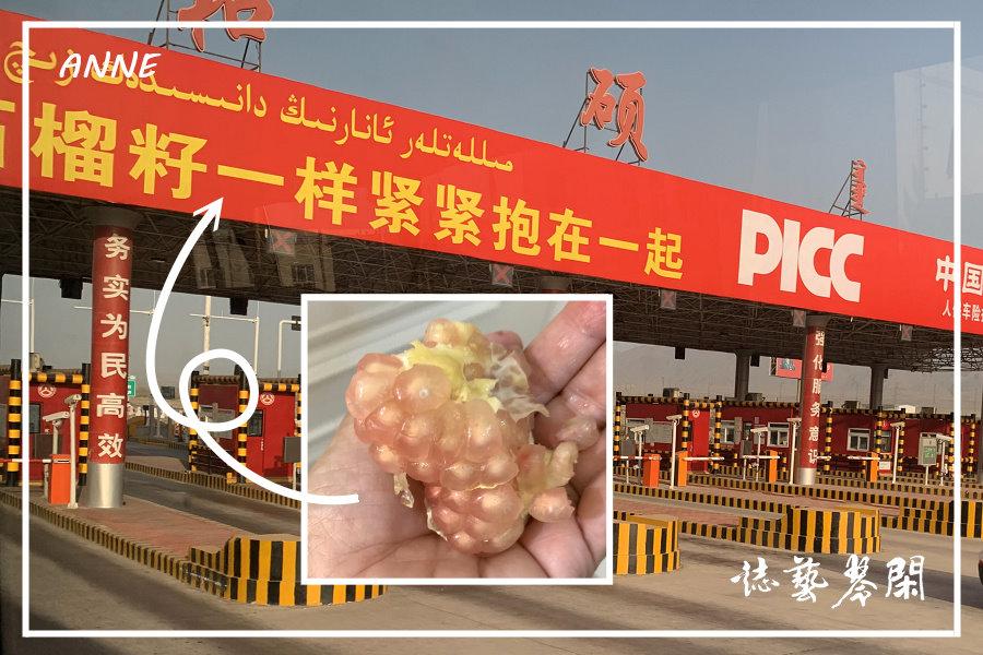 北疆:j (9)P112.jpg