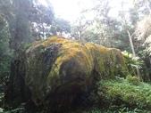 石龜岩猴洞步道:010.jpg