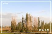 北疆:j (6)P80.jpg