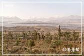 北疆:a0 (36)P49.jpg