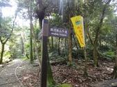 石龜岩猴洞步道:011.jpg