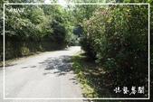 平湖步道:DSCN5420P02.jpg