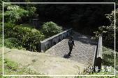 平湖步道:DSCN5421P03.jpg