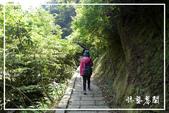 平湖步道:DSCN5426P07.jpg