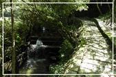 平湖步道:DSCN5426P08.jpg