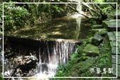 平湖步道:DSCN5430P12.jpg
