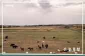 北疆:a0 (77)P87.jpg