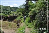 水車寮猴坎水圳:DSC_0280P80.jpg