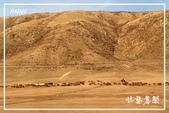 北疆:b0 (14)P35.jpg