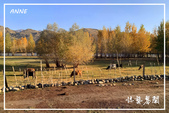 北疆:b0 (24)P98.jpg