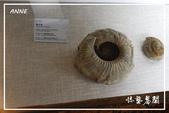 北疆:b0 (52)P129.jpg