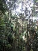 石龜岩猴洞步道:016.jpg