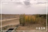 北疆:a0 (78)P88.jpg