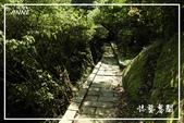 平湖步道:DSCN5425P07.jpg