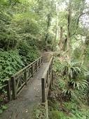 石龜岩猴洞步道:017.jpg