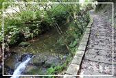 平湖步道:DSCN5427P09.jpg