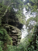 石龜岩猴洞步道:020.jpg