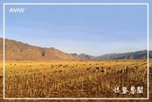北疆:b0 (16)P57.jpg